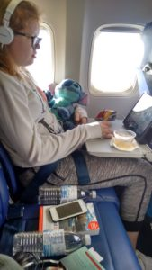 Ceilidh relaxing on plane
